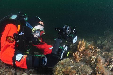 Undervandsfotografering